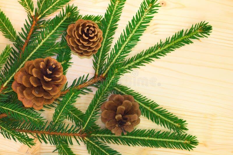Pinho e pinecone na placa de madeira imagem de stock
