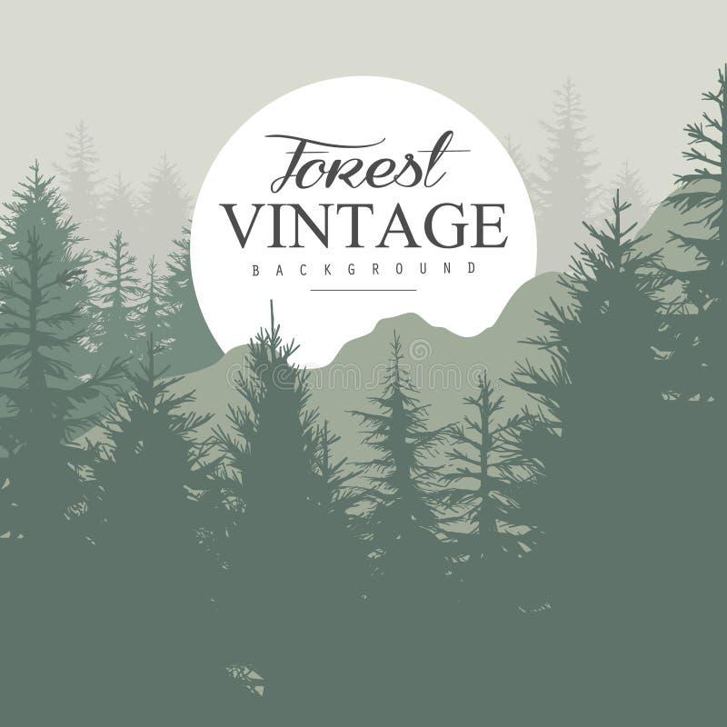 Pinho Forest Vetora Illustration do vintage ilustração do vetor