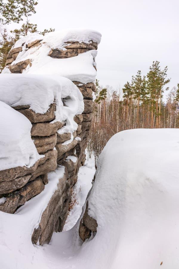 Pinhos e rocha coberto de neve no inverno fotos de stock royalty free