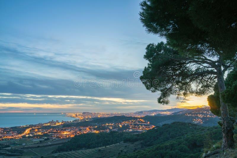 Pini e vista serale di El Masnou fotografia stock libera da diritti
