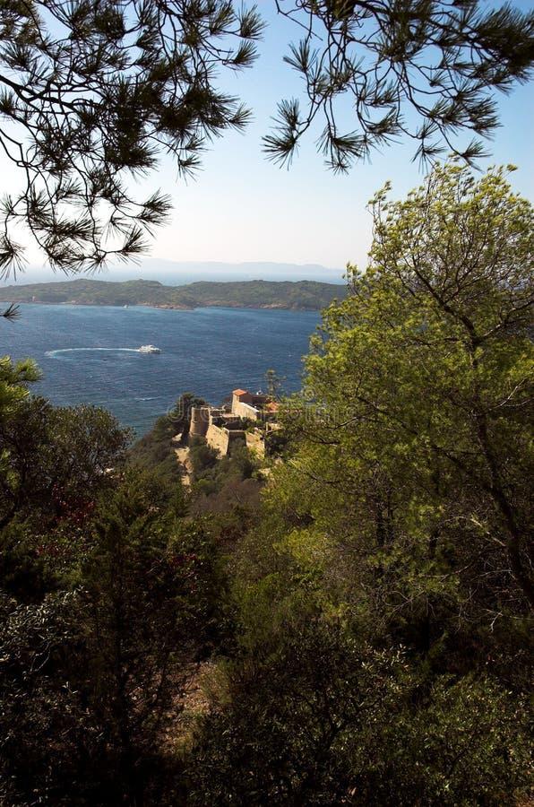 Pini ed il castello fotografia stock libera da diritti