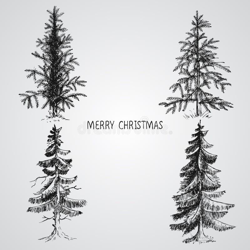 Pini Insieme disegnato a mano realistico di vettore degli alberi di Natale, isolato sopra bianco illustrazione di stock