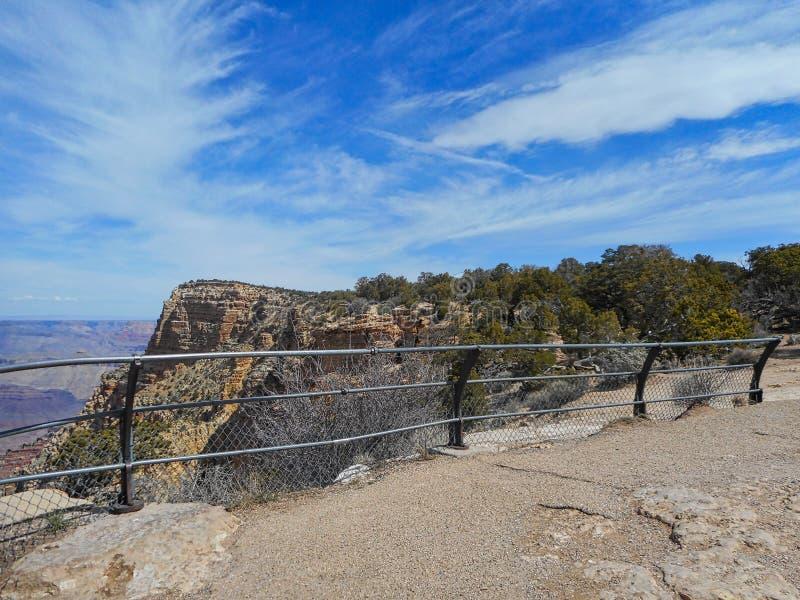 pini nel Grand Canyon fotografie stock