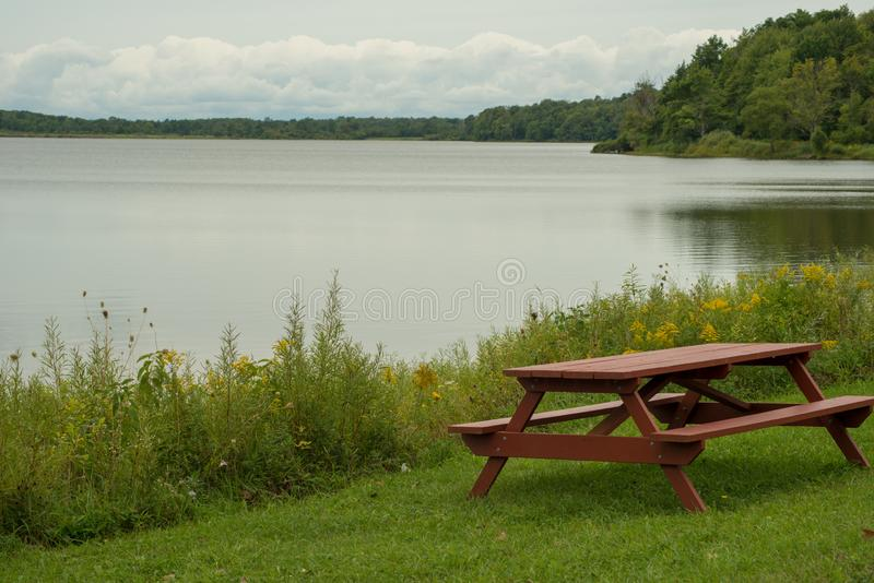 Pinic tabell på lakeshore royaltyfria foton