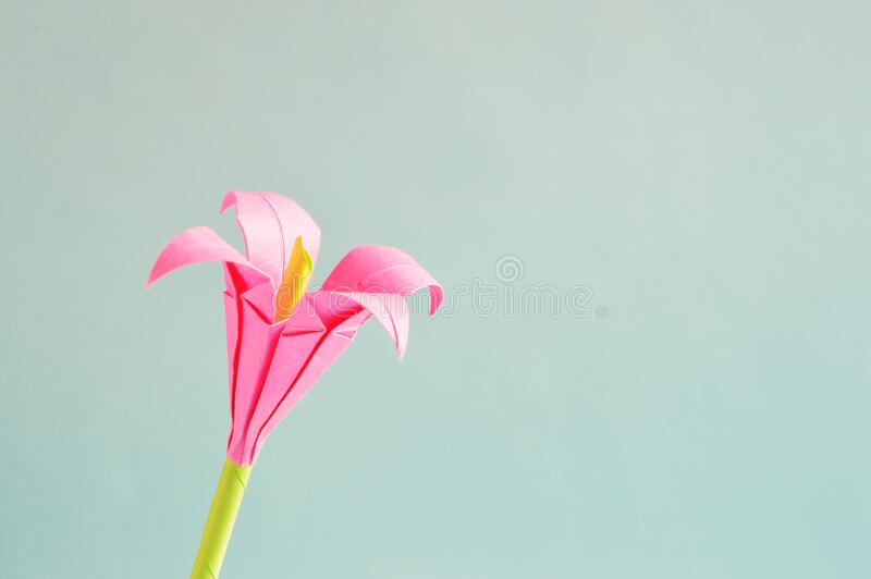 Pink 4 Petaled Flower Free Public Domain Cc0 Image