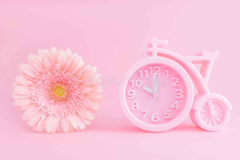 Pink alarm clock and gerbera flower on pink background. Good morning concept. Postcard with copy space. Pink alarm clock in the shape of a bicycle and flower of stock photos