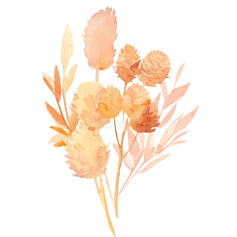 Free Pink And Beige Tropical Leaves, A Bouquet Of Dry Plants On A White Background, Watercolor Illustration In Boho Style Stock Photography - 188300772