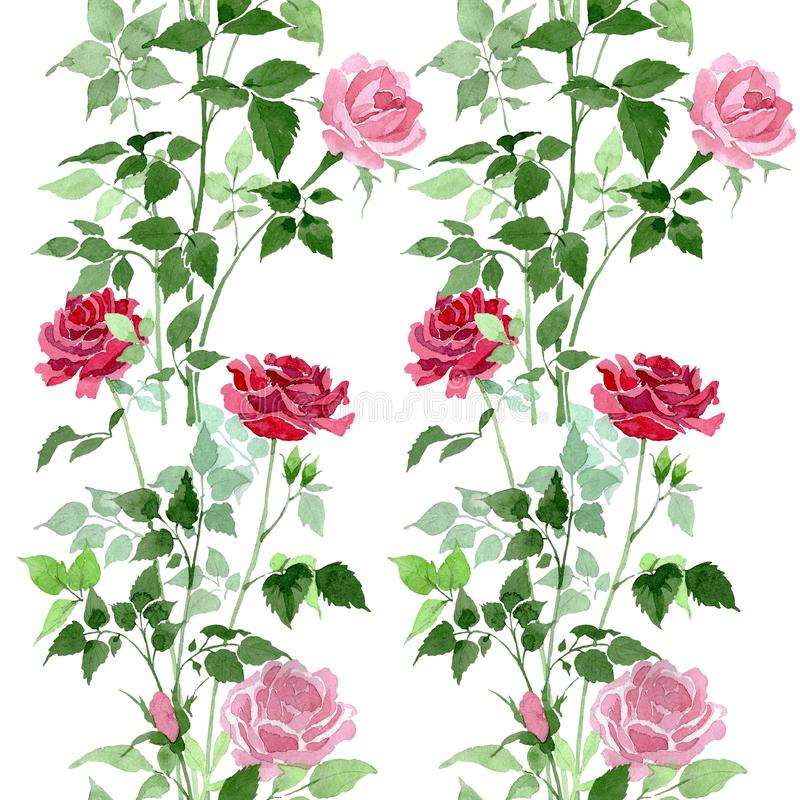 Free Pink And Red Bush Roses Botanical Flowers. Watercolor Background Illustration Set. Seamless Background Pattern. Royalty Free Stock Image - 140376446