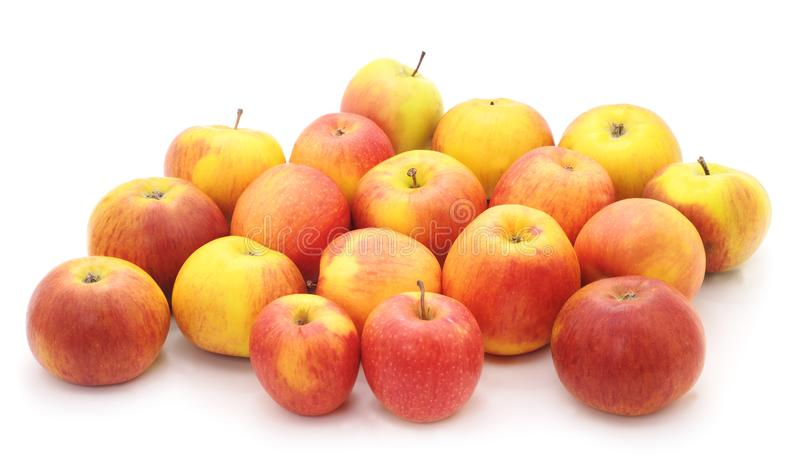 Pink apples. stock image