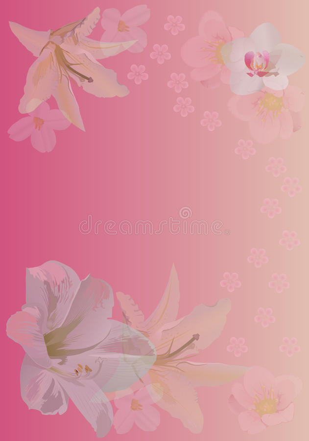 Download Pink Background With Lily And Orchid Flowers Stock Vector - Image: 14291009