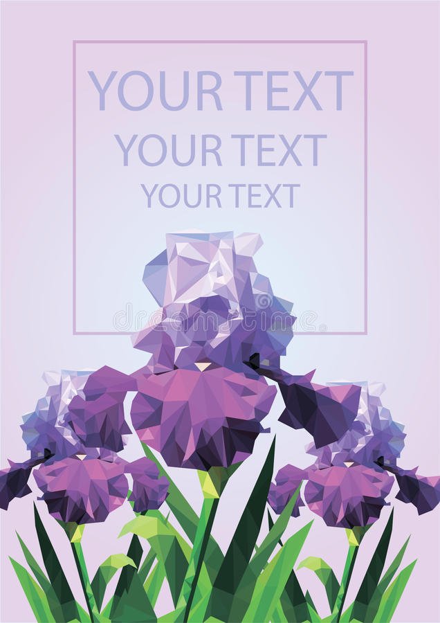 Pink background with polygonal irises. Spring background with purple flowers vector illustration