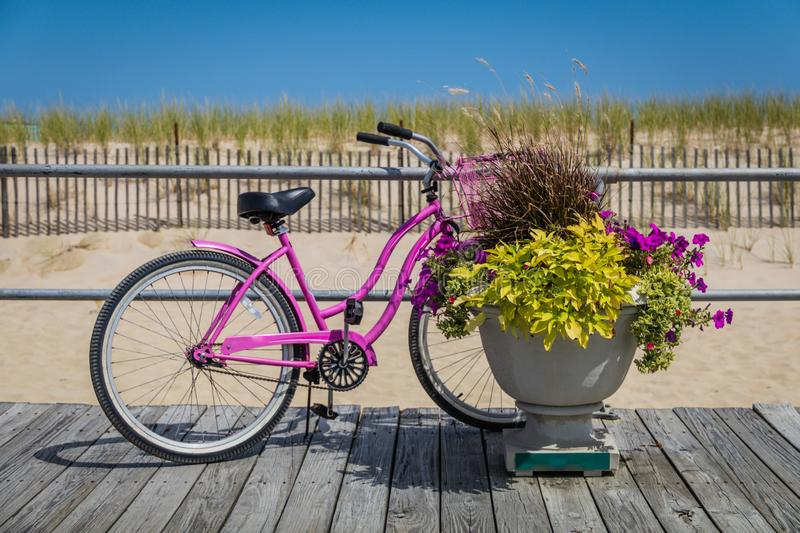 Pink bicycle on boardwalk with potted flower plant on a bright summer day. In Ocean Grove, NJ royalty free stock images