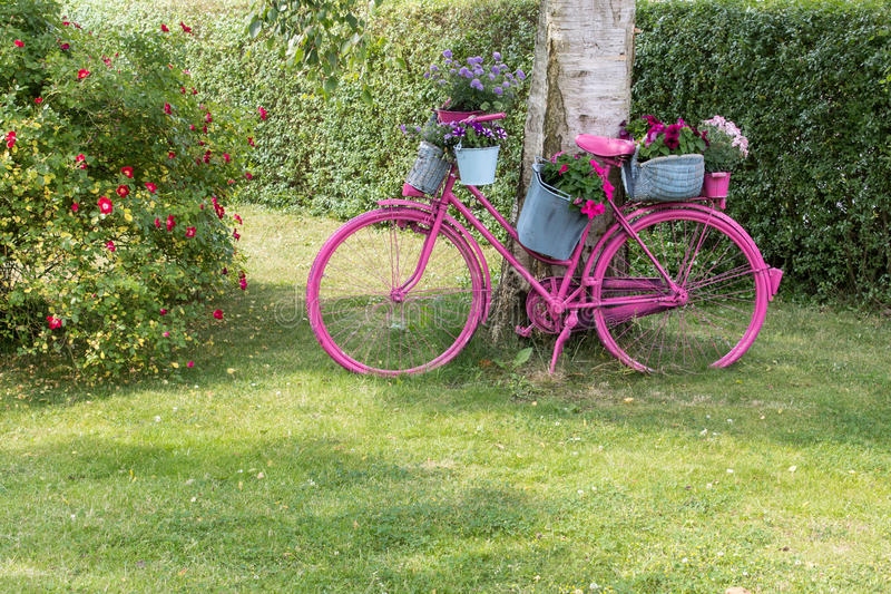 Pink bicycle royalty free stock photography