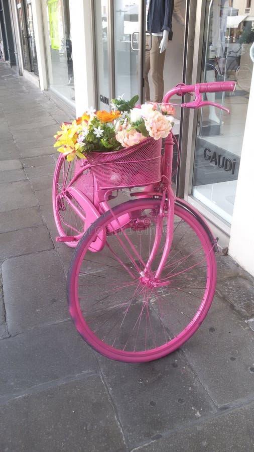 Pink bike wheel royalty free stock images