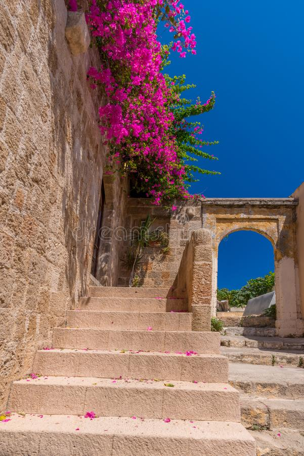 Pink blooming bougainvilleas bush on an old Mediterranean city wall, with ancient stairs and arches, against a vibrant blue sky royalty free stock photos