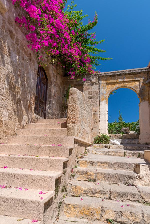 Pink blooming bougainvilleas bush on an old Mediterranean city wall, with ancient stairs and arches, against a vibrant blue sky stock photo