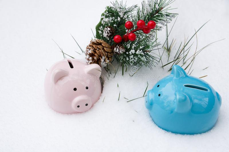 Pink and blue ceramic pig piggy Bank on snow with fir branch, Christmas holiday. Winter season royalty free stock photo