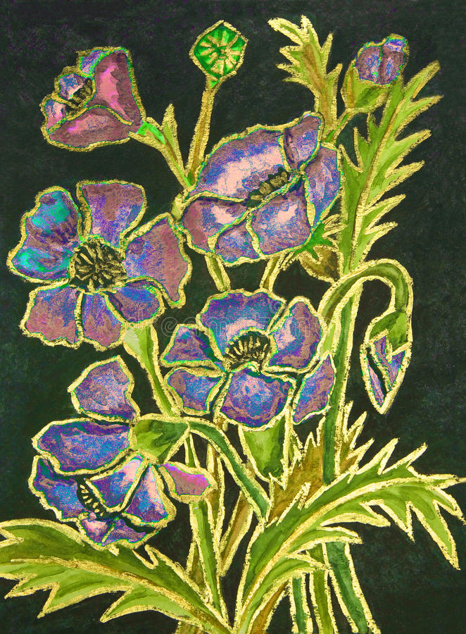 Pink-blue poppies on black background, painting stock illustration