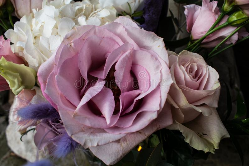 Pink bouquet. Different flowers. Romantic mood. Different flowers royalty free stock photo