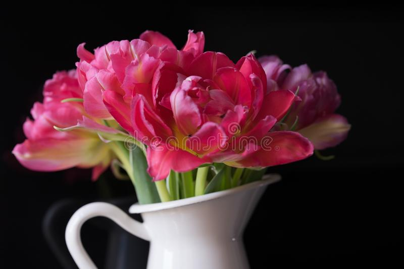 pink bouquet flowers white vase black background tulips stock photography