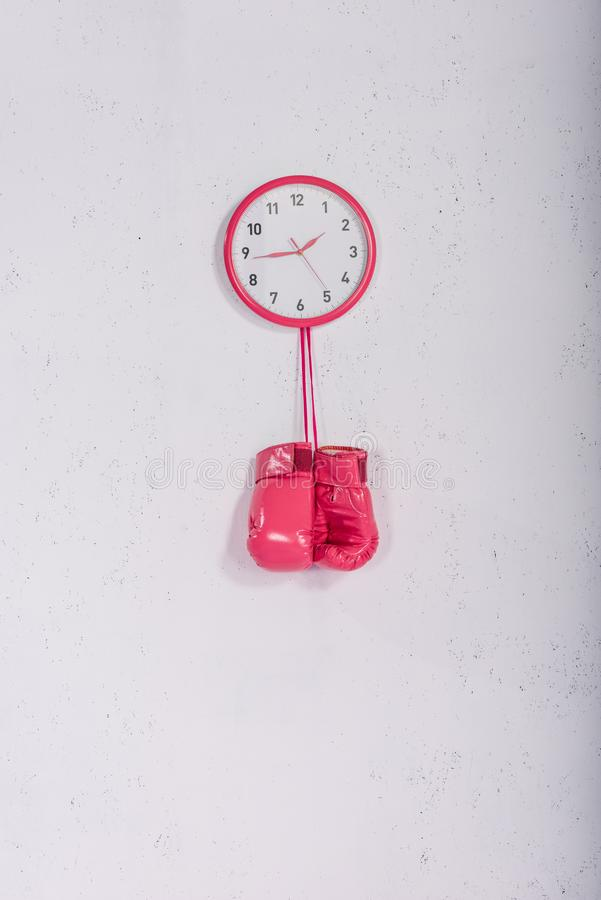 Pink boxing gloves hanging at pink wall clock on white royalty free stock images