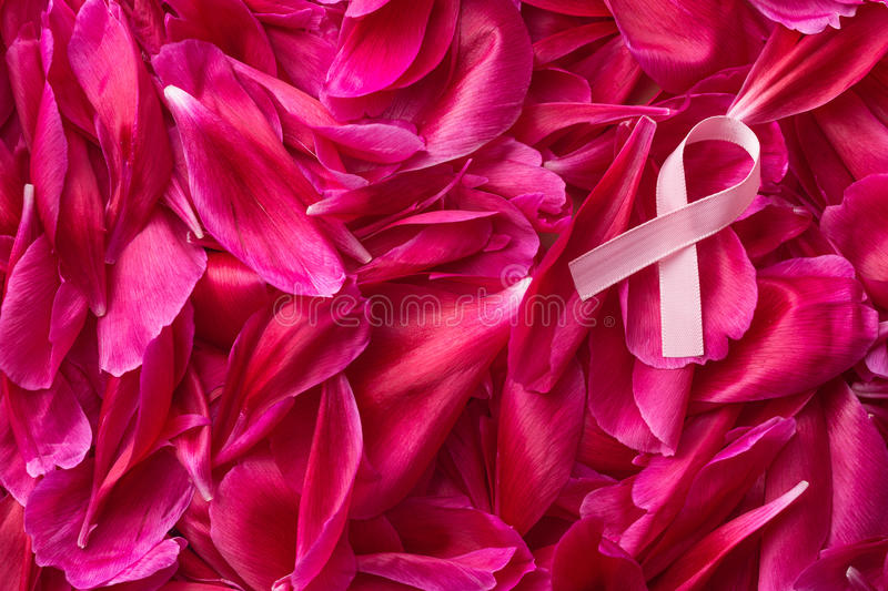 Pink Breast Cancer Ribbon. Pink Breast Cancer Ribbon on blossom background. Top view royalty free stock photos