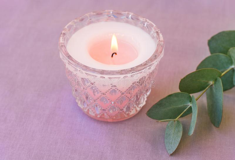 Pink burning candle in elegant crystal candle holder green silver dollar eucalyptus branch on lilac cotton table cloth. Romantic stock photo