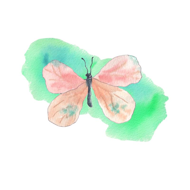 Pink butterfly with emerald background stock photography