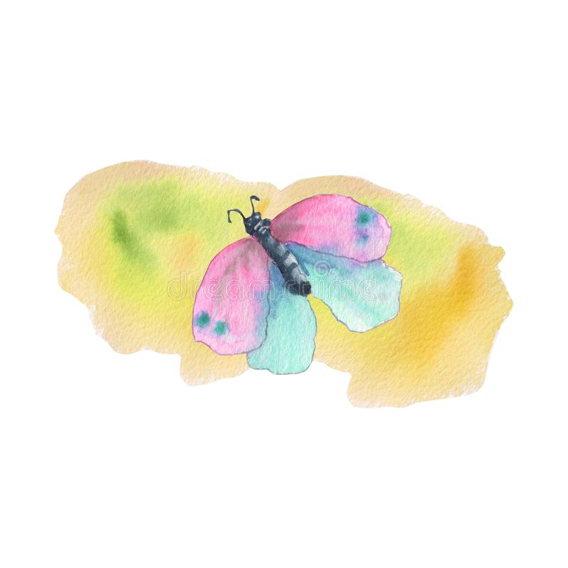 Pink butterfly with orange background stock photos