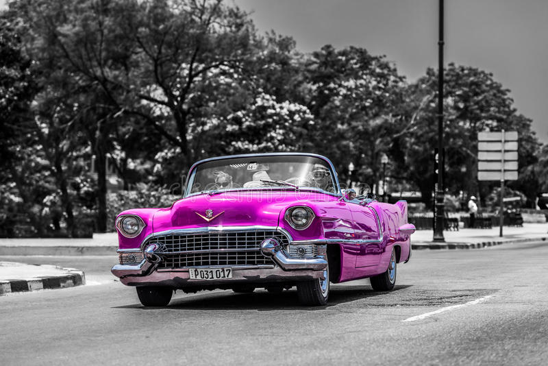 Pink cabriolet classic car on the Malecon in Cuba Havana stock photography