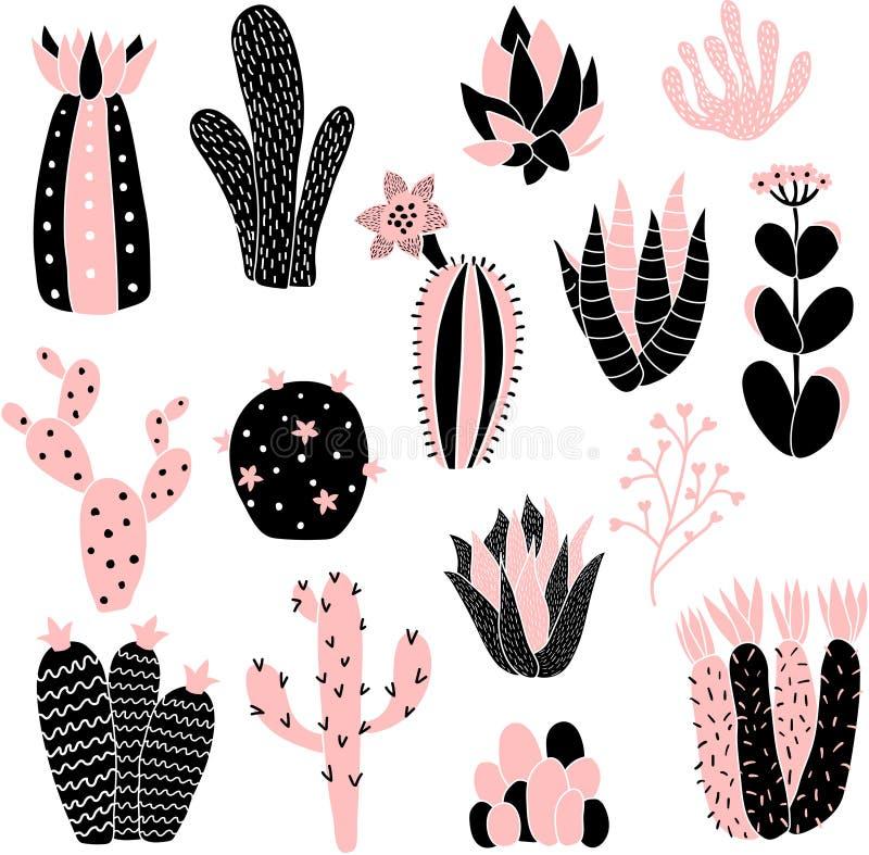 Pink cacti royalty free illustration