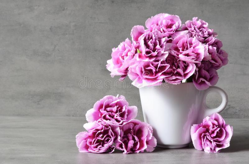 Pink carnation flowers in cup on grey background. stock photography