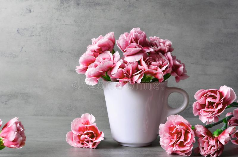 Pink carnation flowers in cup on grey background. royalty free stock photography