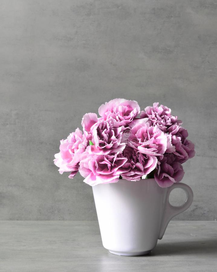 Pink carnation flowers in cup on grey background. royalty free stock image