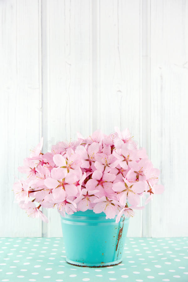 Pink cherry blossom flower bouquet stock photo image of shabby download pink cherry blossom flower bouquet stock photo image of shabby blue 31234022 mightylinksfo