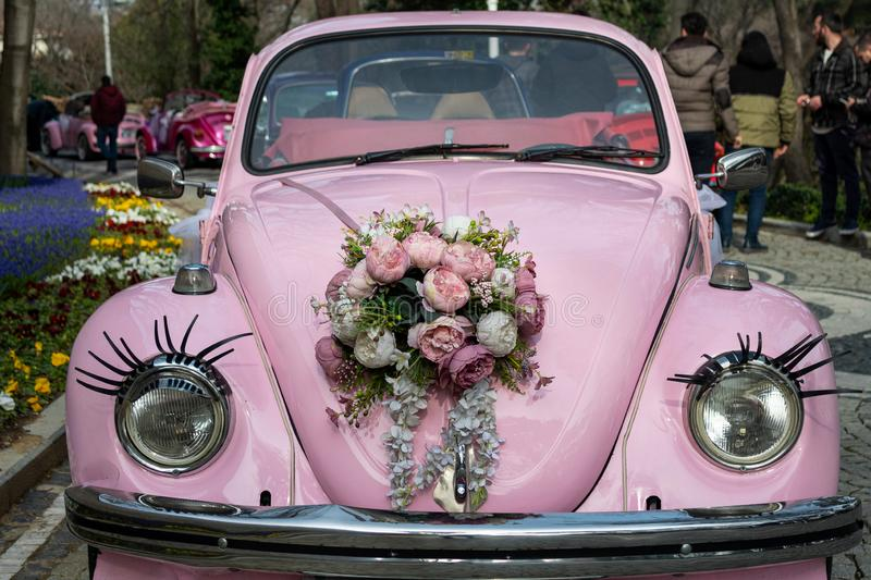 Pink classic convertible car and flowers on hood. Old germany car stock photography