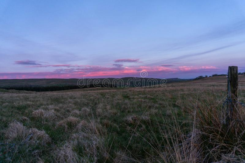 Pink clouds at sunset over grassy field royalty free stock photos