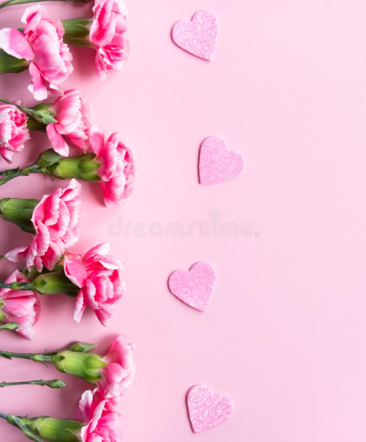 Pink clove flowers royalty free stock photos