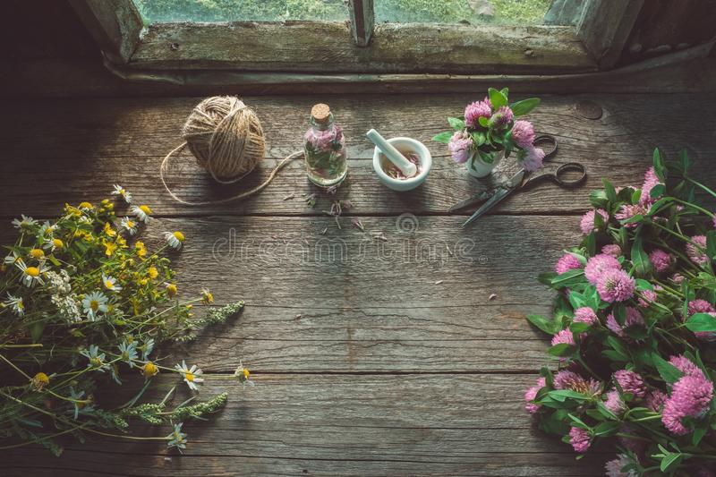 Pink clover, daisies and hypericum flowers, mortar, clover tincture or infusion, scissors and jute. stock image