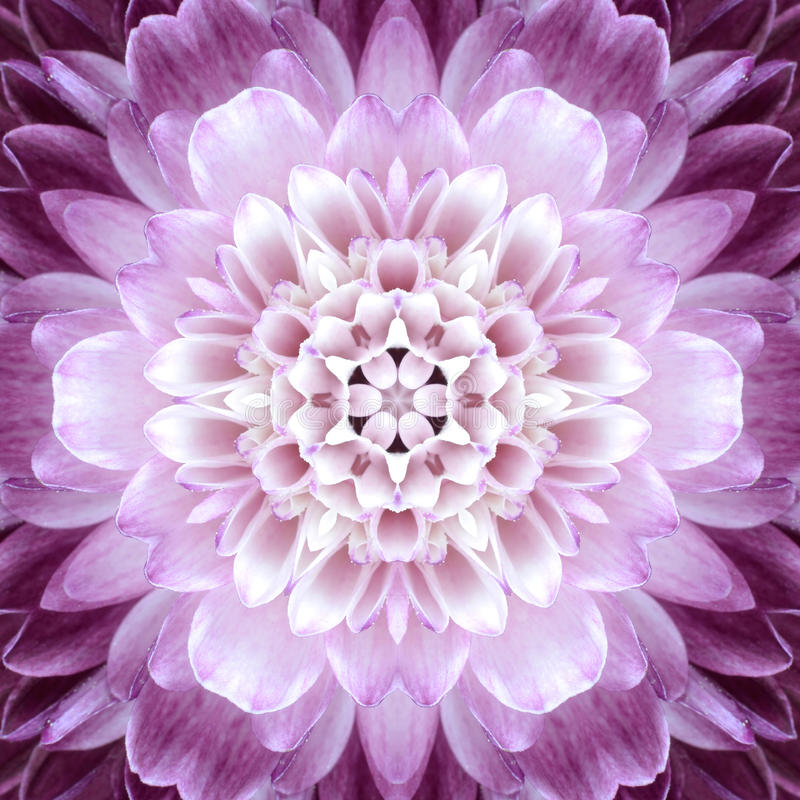 Free Pink Concentric Flower Center. Mandala Kaleidoscopic Design Royalty Free Stock Photo - 35944885