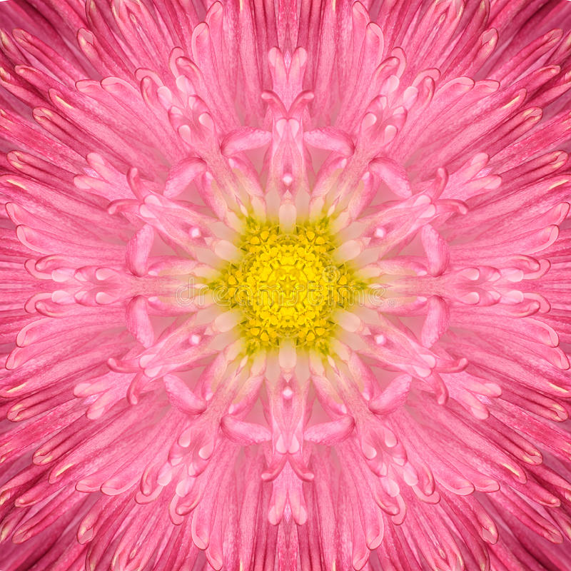 Pink Concentric Flower Center. Mandala Kaleidoscopic design royalty free stock images