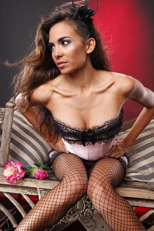 Download Pink Corset And Fishnet Stockings Royalty Free Stock Photo - Image: 17115725