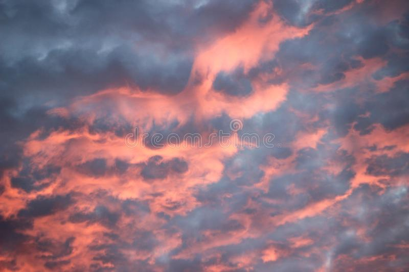 Pink cotton candy clouds at sunset. Dramatic blue, pink and purple cotton candy clouds. Sunset sky stock photos