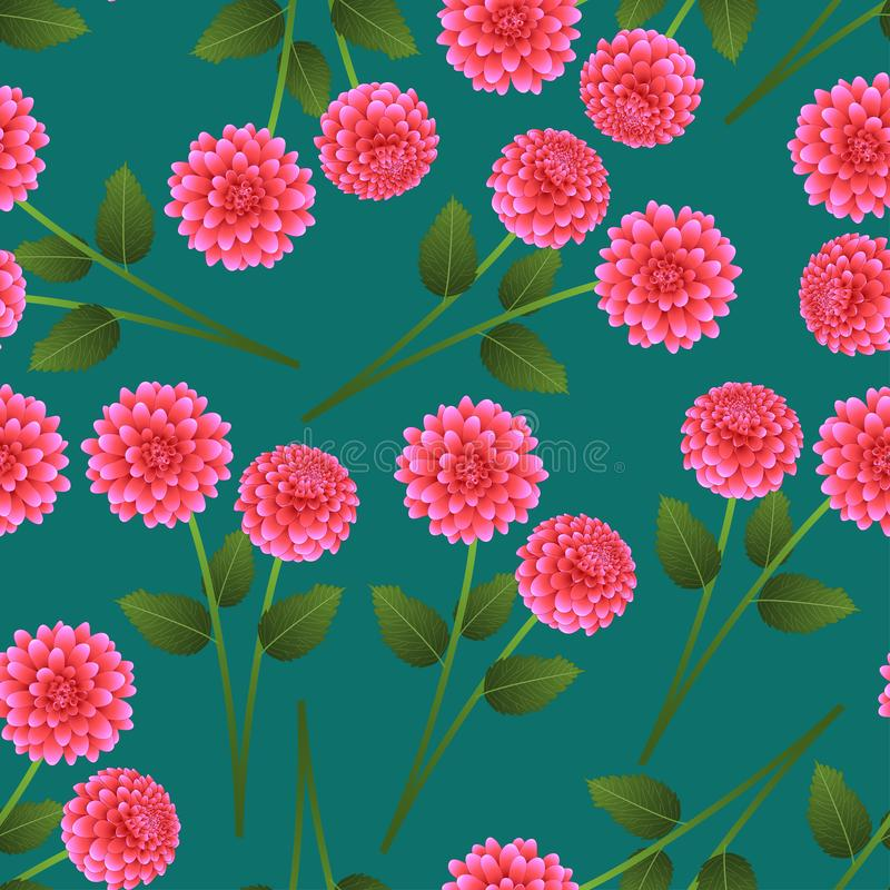 Pink Dahlia on Green Teal Background. Mexico`s national flower. Vector Illustration.  vector illustration