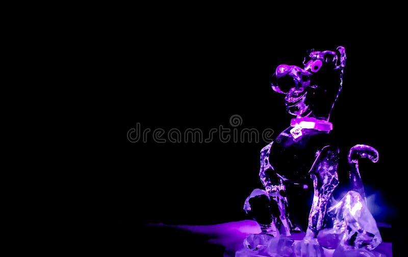 - Pink dog na festiwalu rzeźb lodowych w Zwolle, Holandia obraz royalty free