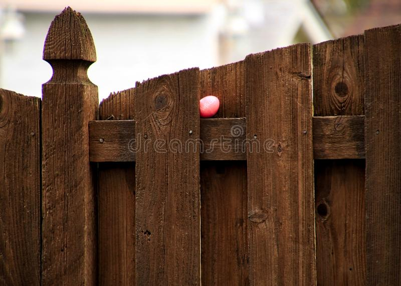 Pink-dyed Easter egg with name of `Natalie` is hidden on a ledge on wooden fence. Pink-dyed Easter egg with name of `Natalie` written on it is hidden on a ledge stock photos