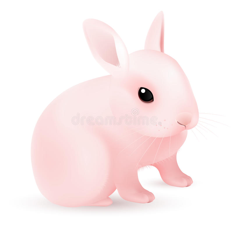 Download Pink Easter Bunny stock vector. Illustration of animal - 23140544
