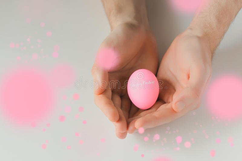 Pink easter egg in hands on white background stock photography