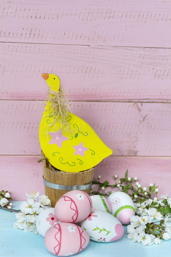 Pink easter eggs,chicken and cherry blossoms on a blue wooden background. Pink easter eggs and cherry flowers on a wooden background .Easter decoration royalty free stock photo