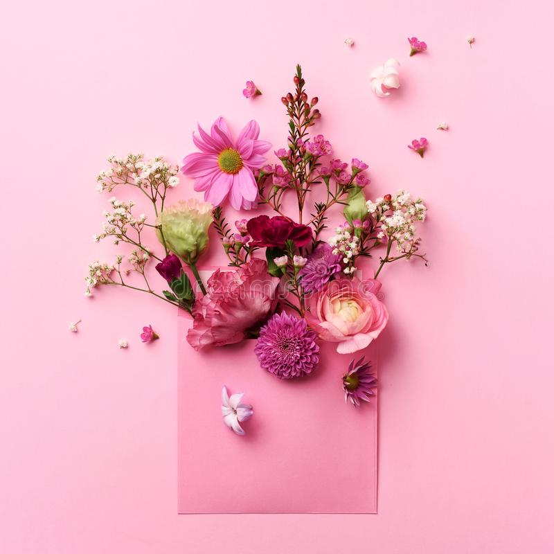 Pink envelope with spring flowers. Floral composition, creative layout. Flat lay, top view. Spring, summer or garden concept. royalty free stock photos